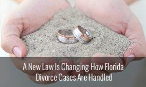 Florida Divorce Cases